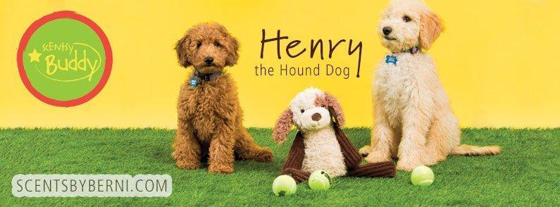 Henry the Hound Dog NEW Scentsy Buddy!